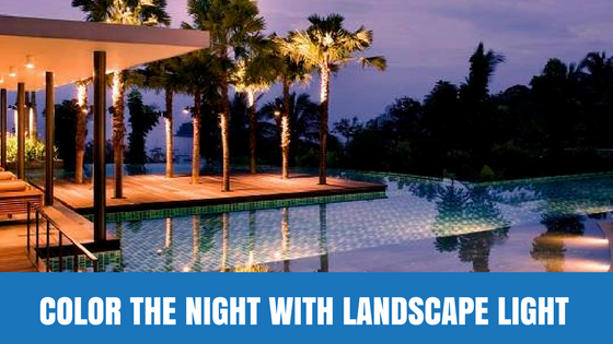 Color the Night With Landscape Light
